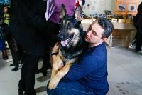 Выставка собак в Туле, Фото: 66
