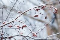 Тула после снегопада. 23.12.2014, Фото: 35