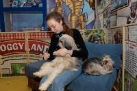 Выставка собак DogLand, Фото: 23