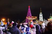 Главную ёлку Тулы открыли грандиозным фейерверком, Фото: 11