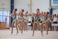Первенство ЦФО по спортивной гимнастике, Фото: 5