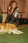 В Туле прошла всероссийская выставка собак, Фото: 55