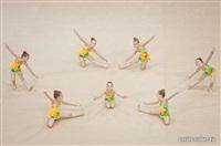 III Всебелорусский открытый турнир по эстетической гимнастике «Сильфида-2014», Фото: 8
