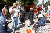 Незаконная торговля «с земли»: почему не все туляки хотят идти на рынки?, Фото: 17