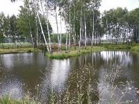 Эко-парк «Моя деревня», Фото: 34