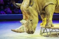 Туляков приглашают на новогоднее представление «Ёлка в цирке», Фото: 27