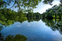 Летний день в Ясной Поляне, Фото: 47