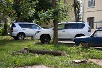 Мне нужнее: в тульском дворе подрядчик самовольно вырубил 15 ясеней и забрал их себе, Фото: 9