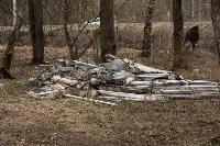 В лесу в Узловском районе обнаружена свалка ртутных ламп, Фото: 3