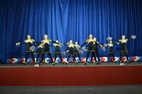 Открытый Чемпионат Тульской области по черлидингу, Фото: 26