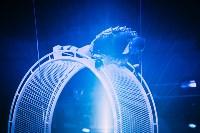 Шоу Lovero в тульском цирке, Фото: 17