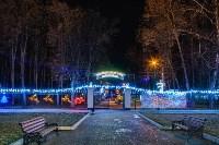 Тульские парки украсили к Новому году, Фото: 17