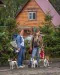 Международная выставка собак, Барсучок. 5.09.2015, Фото: 81