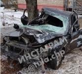 В Туле водитель Volvo снес остановку и протаранил дерево , Фото: 1