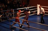 В Туле прошла матчевая встреча звезд кикбоксинга, Фото: 26