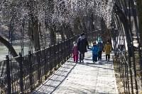 Солнечный день в Белоусовском парке, Фото: 21
