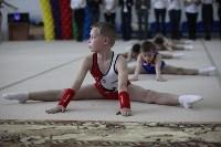 Соревнования по спортивной гимнастике на призы Заслуженных мастеров спорта , Фото: 22