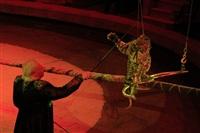 Цирк «Вива, Зорро!» в Туле , Фото: 19