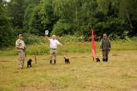 Выставка охотничьих собак под Тулой, Фото: 73
