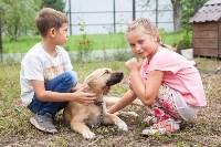 Семья Елены и Василия Кучерявых, Фото: 20