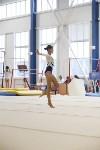 Спортивная гимнастика в Туле 3.12, Фото: 167