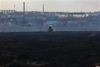 Сразу в нескольких районах Тульской области загорелись поля, Фото: 9