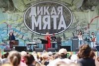 """""""Дикая Мята - 2014"""", Фото: 210"""