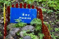 Кладбище домашних животных в Туле, Фото: 27