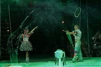 В Тульском цирке прошла премьера аква-шоу, Фото: 65