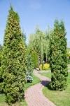 Чудо-сад от ландшафтного дизайнера Юлии Чулковой, Фото: 40