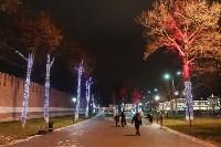 Украшение парка к Новому году, 15.12.2015 , Фото: 38