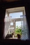 Ясная Поляна, Фото: 9