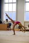 Спортивная гимнастика в Туле 3.12, Фото: 100