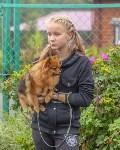 Международная выставка собак, Барсучок. 5.09.2015, Фото: 43