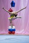 Соревнования по художественной гимнастике 31 марта-1 апреля 2016 года, Фото: 124
