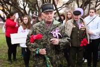 Сирень Победы 2015, Фото: 67