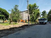 вырубка деревьев во дворе дома №33 по ул. Горького в Туле, Фото: 10