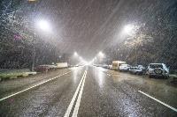 Апрельский снегопад - 2021, Фото: 89