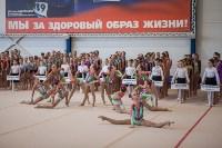 Первенство ЦФО по спортивной гимнастике, Фото: 3