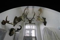 Ремонт в Краеведческом музее, Фото: 18