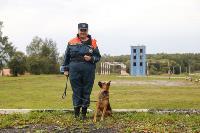 Испытания кинологов в Тульском спасательном центре, Фото: 2