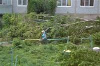 Ураган в Ефремовском районе, Фото: 6