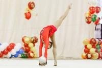 Художественная гимнастика. «Осенний вальс-2015»., Фото: 128