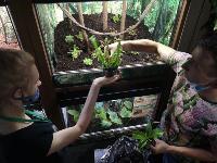 Укротитель хищных растений Сергей Куницын, Фото: 9