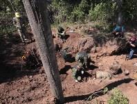 Останки бойцов в деревне Криволучье, Фото: 13