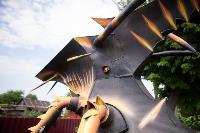 Умелец из Богородицка, Фото: 20