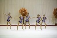 """Соревнования по художественной гимнастике """"Осенний вальс"""", Фото: 136"""