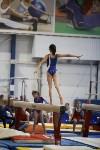 Спортивная гимнастика в Туле 3.12, Фото: 155