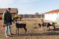 Семён Яблоновский и его ферма, Фото: 9