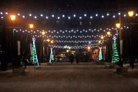 Тульские парки украсили к Новому году, Фото: 3